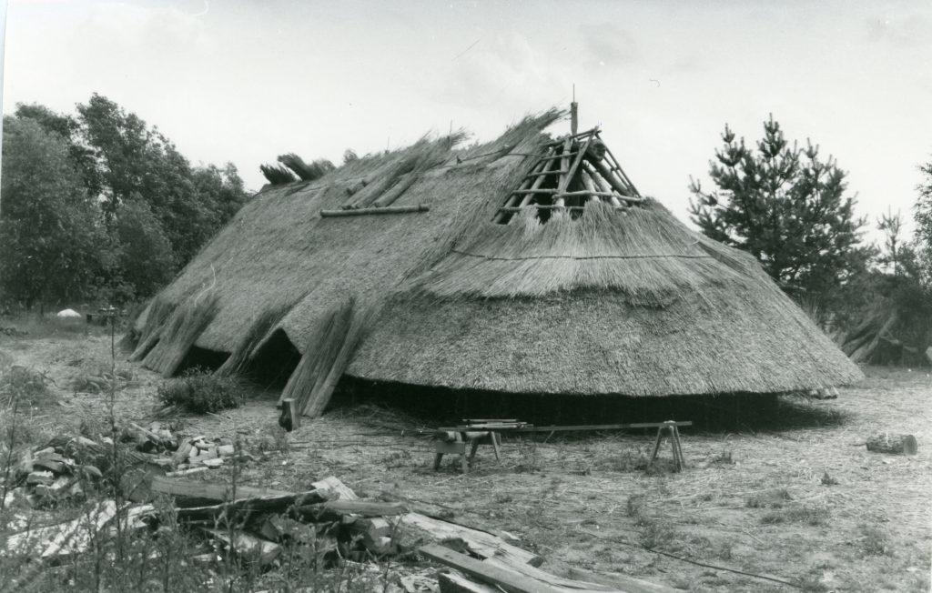 Eins der rekonstruierten Langhäuser auf dem Gelände des Freilichtmuseums ekommt sein Reetdach
