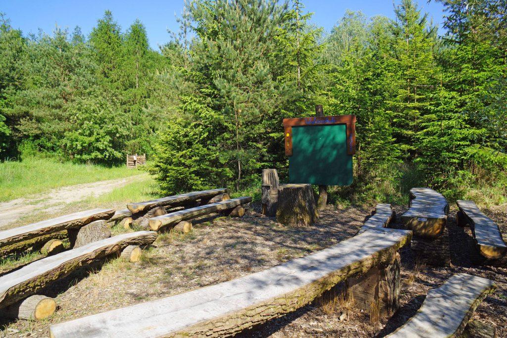 Wald für Jung und Alt